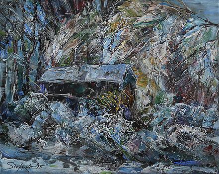 Winter Impression by Stefano Popovski