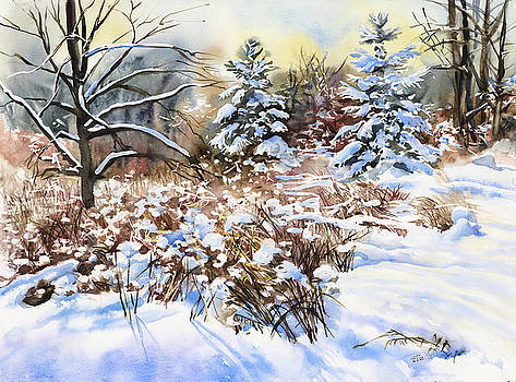Winter in Blackburn Hamlet by Jack Tzekov