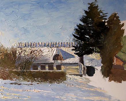 Winter in Denmark by Misha Lapitskiy