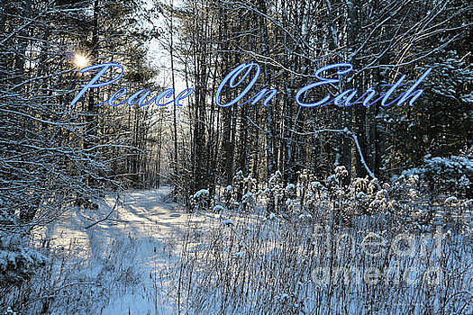 Sandra Huston - Winter in Maine - Peace On Earth Christmas Card