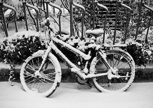Winter in Munich by Victoria Savostianova