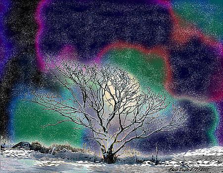 Winter in Oklahoma 2011 by Cheri Doyle