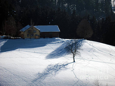 Susanne Van Hulst - Winter in Switzerland - Tracks in the Snow