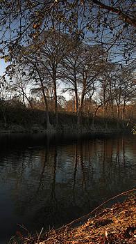 Karen Musick - Winter in Texas