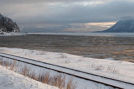 Winter in the Arm by Jeannette Reddington