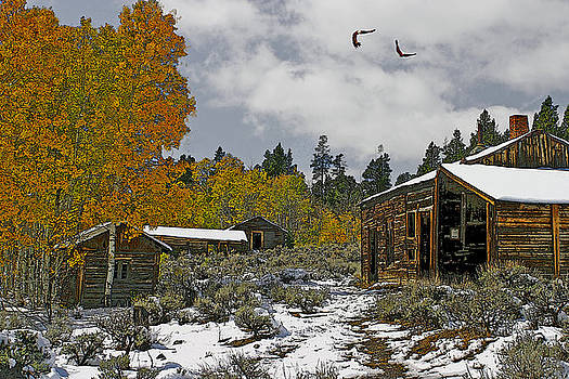 Winter in the High Country by Julie Grace