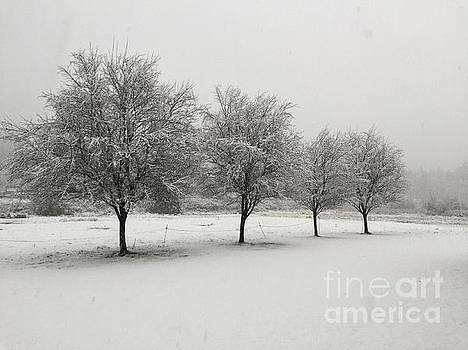 Winter In The Northwest by Beth Erickson