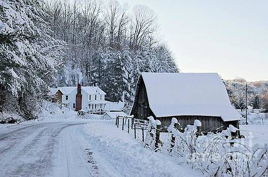 Winter in Virginia by Benanne Stiens