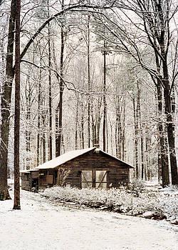 Winter In Virginia by Kathy K McClellan