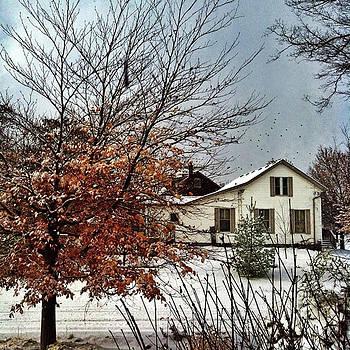 Winter In Woodstock by Eduardo Tavares