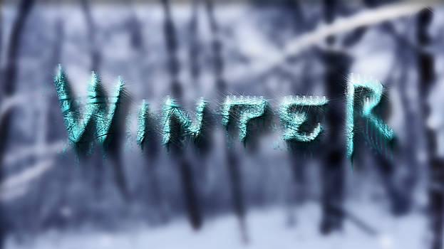 Winter by Ivan Gomez