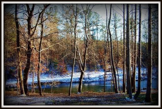 Winter Lake by Beverly Hammond