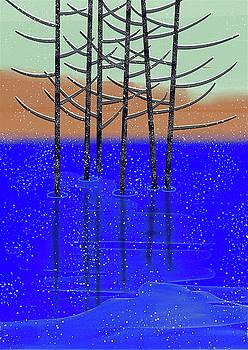 Winter lake by Brett Shand