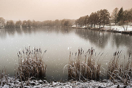 Winter landscape 2  in France by Eric Bauer