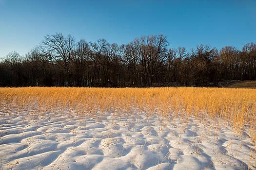 Dana Sohr - Winter Landscape 3