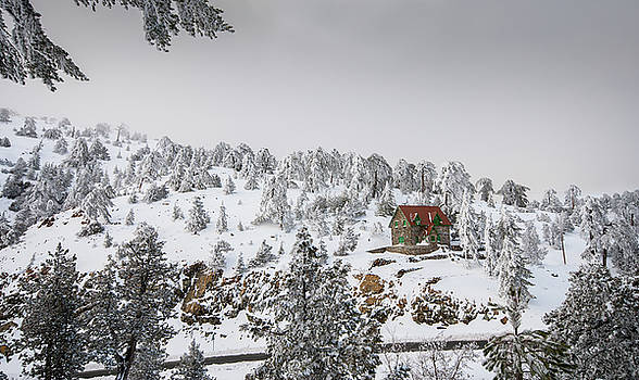 Winter landscape Troodos mountains Cyprus by Michalakis Ppalis