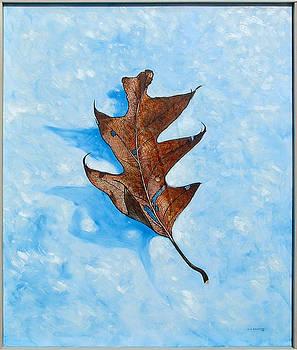 Winter Leaf by Erik Schutzman