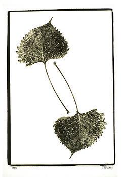 Jerry McElroy - Winter Leaf