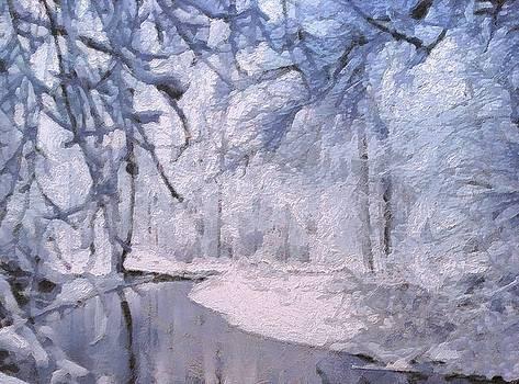 Winter by Lelia DeMello