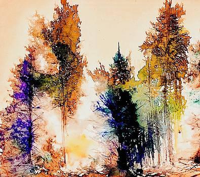 Winter Light 2 by Julia S Powell