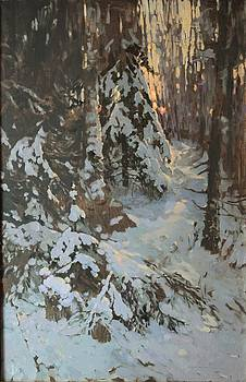 Winter Light by Anna Ankudinova