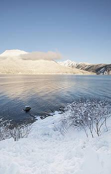 Winter Light by Michele Cornelius
