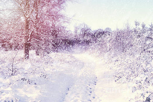 Winter Magic by Ann Garrett
