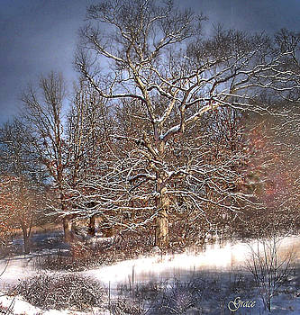 Winter Magic by Julie Grace