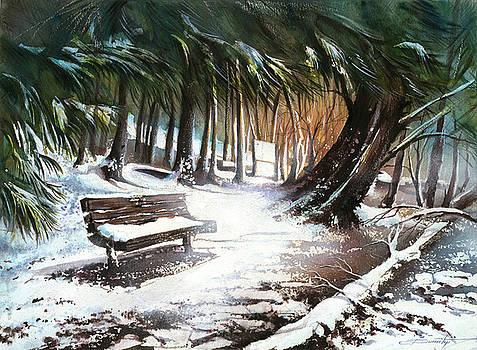 Winter Moments by Dumitru Barliga