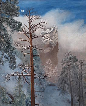 Winter Moon by Barbara Barber