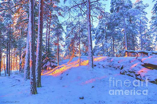 Winter morning 2 by Veikko Suikkanen