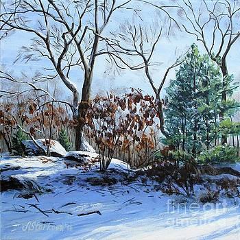 Winter morning by Anna Starkova