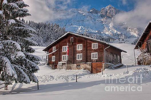 Winter morning by Caroline Pirskanen