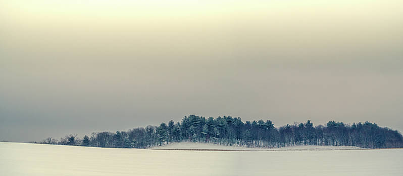 Winter Morning by Donna Lee