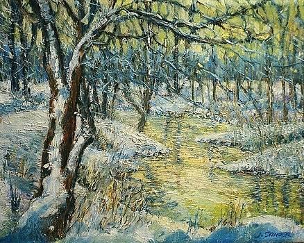 Winter Morning by John  Stinger