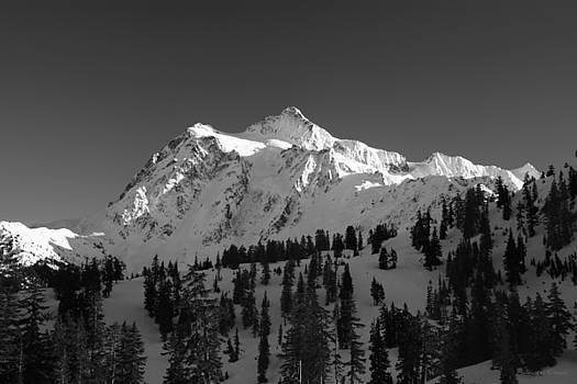 Winter Mountain Monochrome by Winston Rockwell