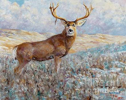 Neil Jones - Winter Mule Deer
