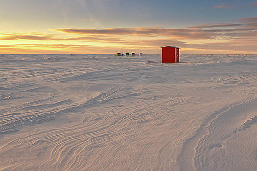 Winter by Nebojsa Novakovic