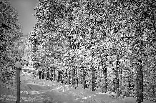 Winter New England Style by Tricia Marchlik