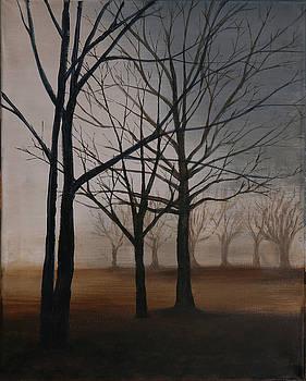 Winter Oaks by Stacy Williams