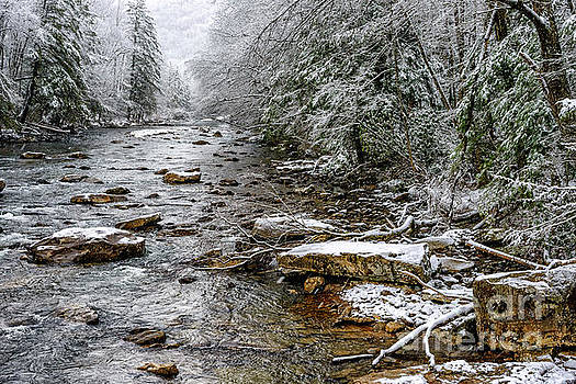 Winter on Cranberry River by Thomas R Fletcher