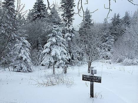 Winter on the Appalachian Trail by William Sullivan
