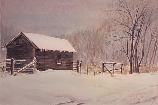 Winter on the Farm  by Debbie Homewood