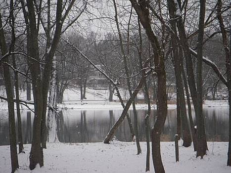 Winter on the Fox by Deborah Finley