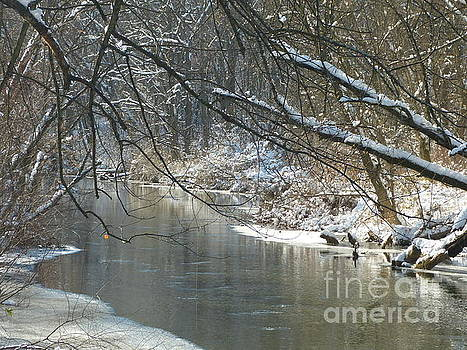 Winter on the Stream by Donald C Morgan