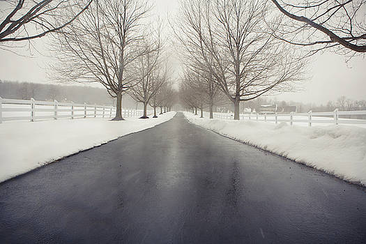 Winter Path by Betsy Barron