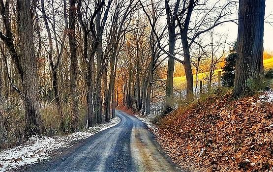 Jim Harris - Winter Path