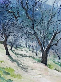 Winter Path by Maralyn Miller