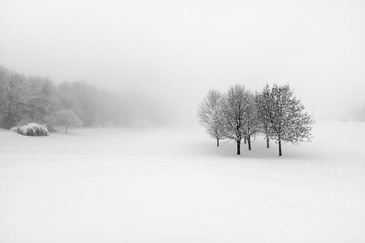 Winter by Pawel Klarecki