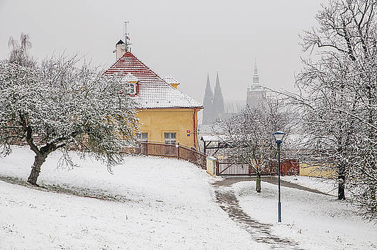 Jenny Rainbow - Winter Petrin Park. Snowy walk in Prague